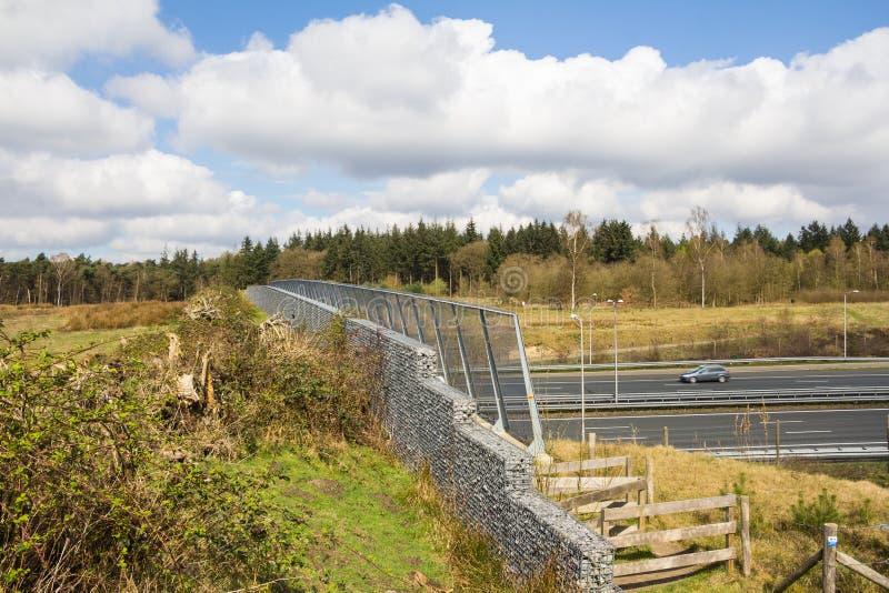 穿过在的动物或野生生物天桥的看法一条高速公路 免版税图库摄影