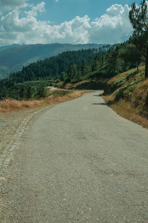 穿过多小山风景的乡下车行道 库存照片
