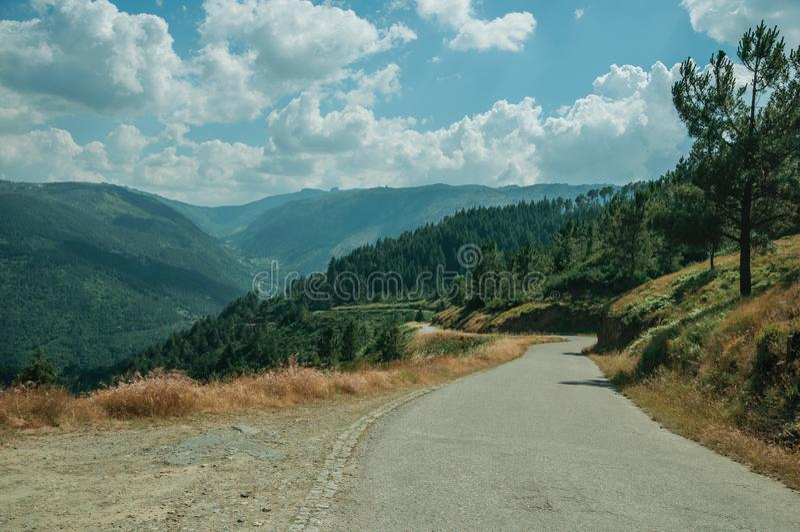 穿过多小山风景的乡下车行道 免版税图库摄影