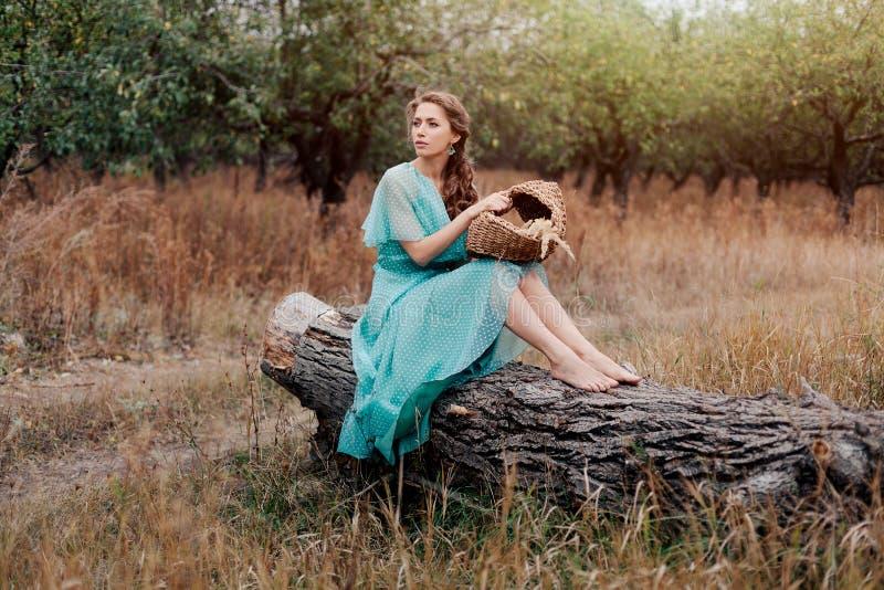 穿长的庄重装束坐领域,秋天季节,放松的浪漫妇女在乡下,享受自然, pleasur 免版税库存照片