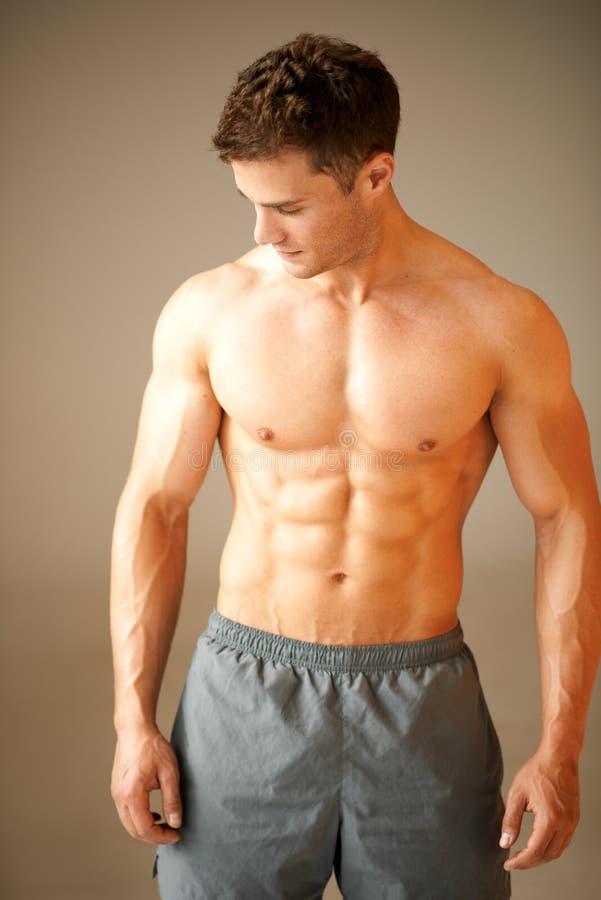 突出在褐色的肌肉运动的人纵向  库存图片