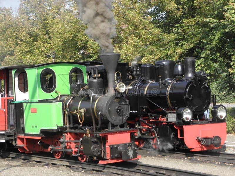 窄片蒸汽铁路火车 库存图片