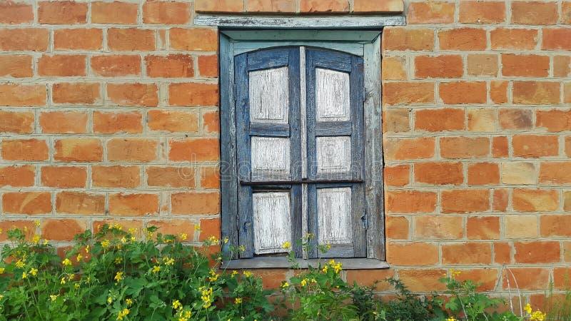 窗口和红砖墙壁在一个五颜六色的样式 地道设计 免版税库存照片