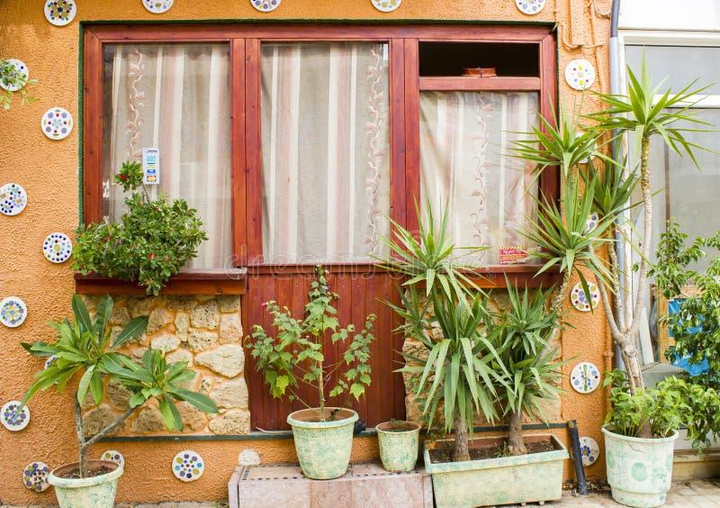 窗口和许多花盆在老家 库存图片