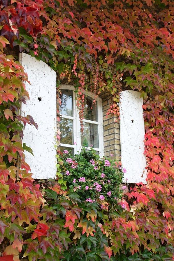 窗口在秋天 库存照片