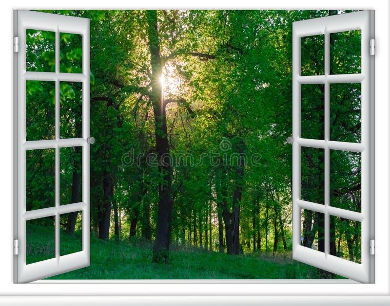 Download 从窗口的日出视图 库存图片. 图片 包括有 黑暗, 照亮, 内部, 没人, 典雅, 黄昏, 细分, 及早 - 72358971