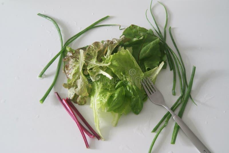 立即可食健康和新鲜的绿色的菜 免版税图库摄影