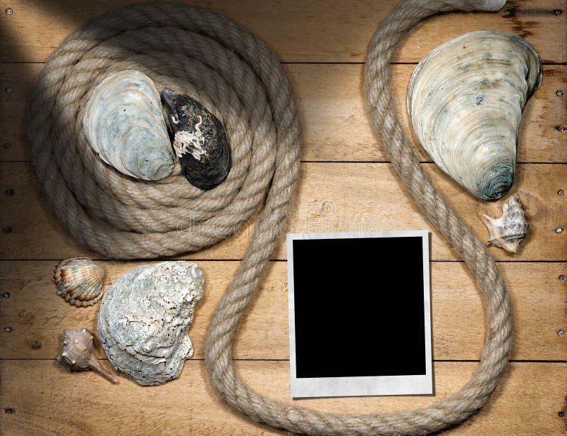 立即照片-绳索和贝壳 库存图片