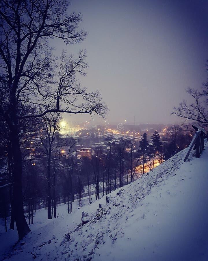 立陶宛 免版税库存照片