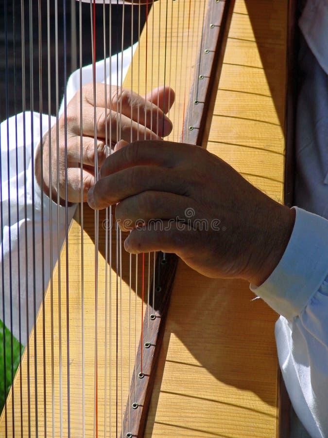 竖琴使用 免版税库存照片