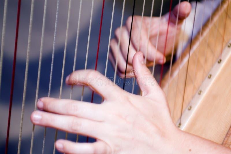 竖琴 免版税库存照片