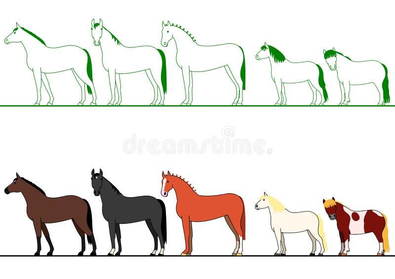 站在队中的马 向量例证