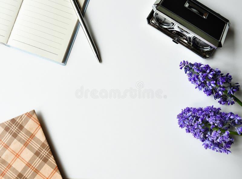 站点的轻的有趣的背景 笔记本,笔,剧院双筒望远镜,花,艺术 细节和元素在边缘 免版税库存照片