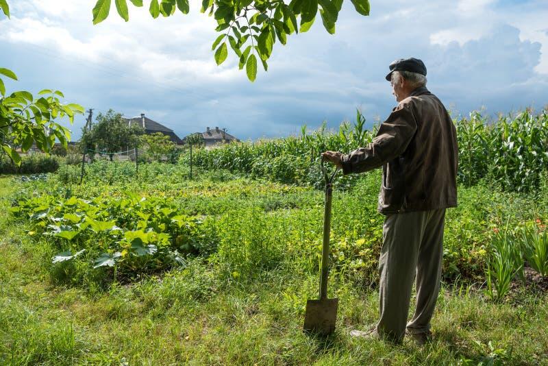 站立与铁锹的农夫 免版税库存图片
