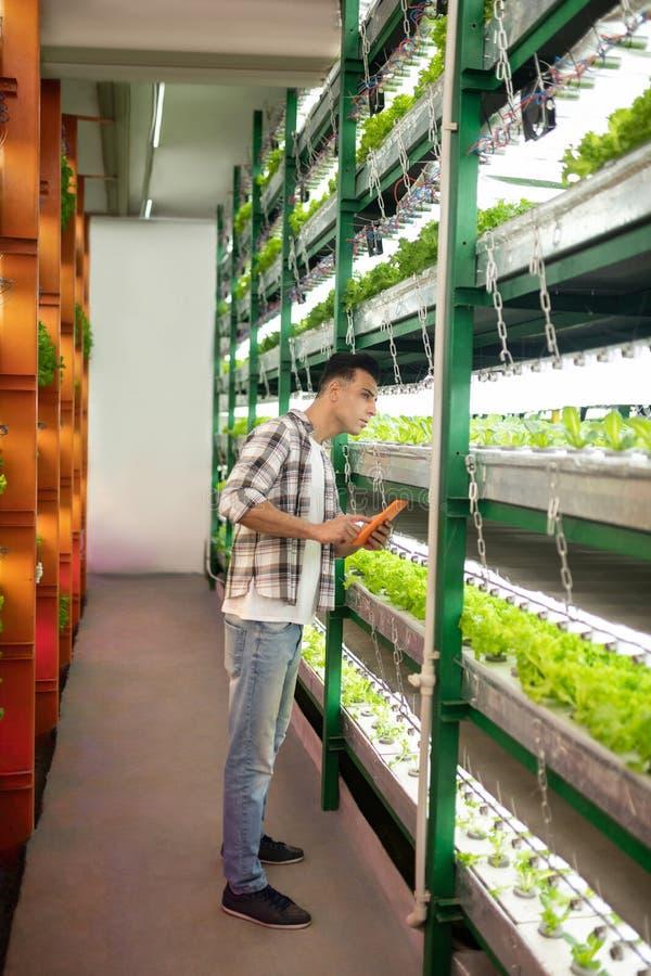 站立和看与植物的农业学家架子 免版税库存图片