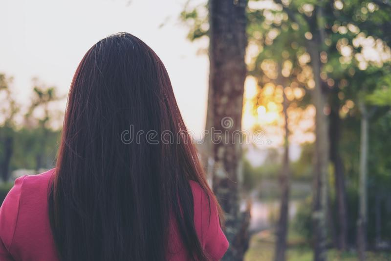 站立和转动她的妇女在日落背景绿色本质和光  免版税库存图片
