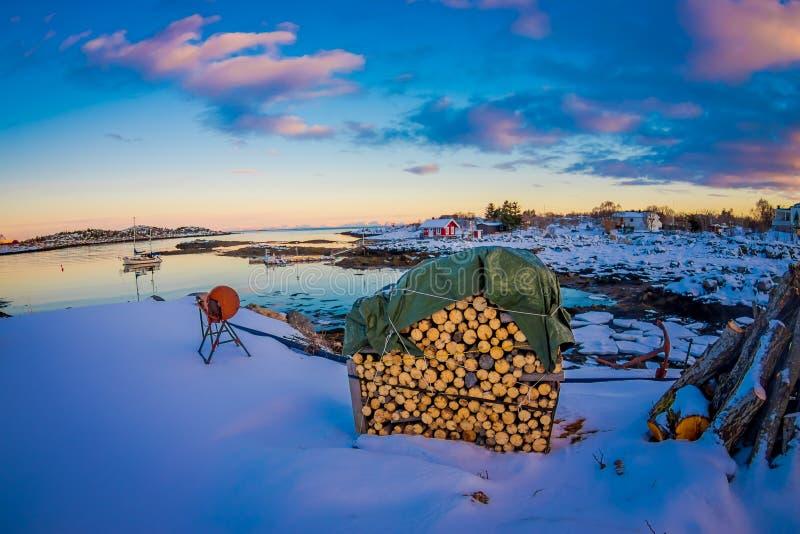 站立在一个华美的日落视图的雪的金属结构室外看法与堆木材或树干 库存照片