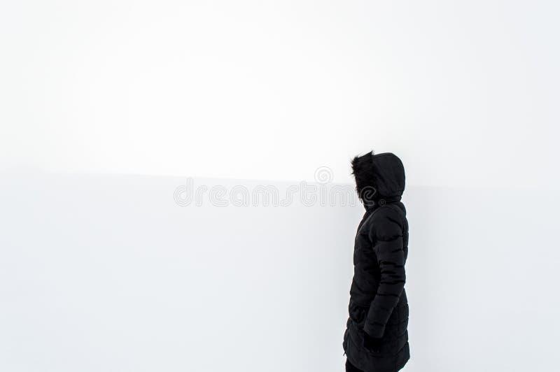 站立在一个多雪的领域的妇女 免版税库存照片
