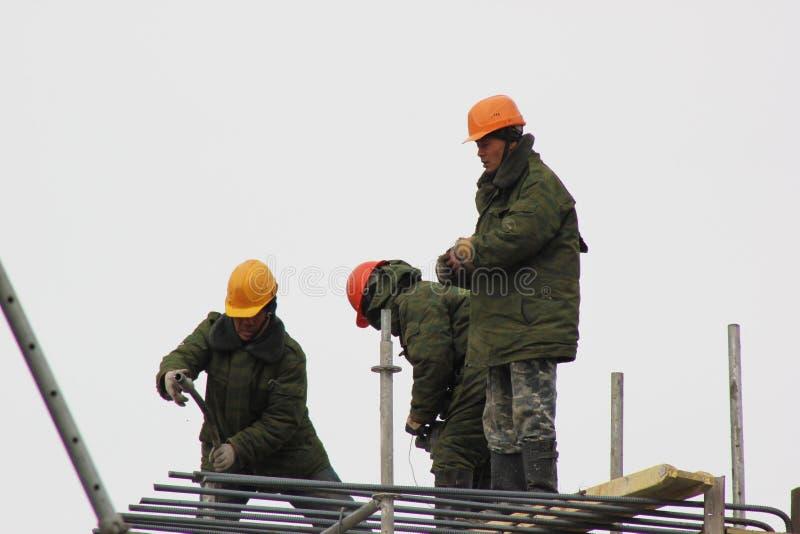 站立在一个木楼梯的工作者在森林,修理大厦的墙壁 免版税库存照片
