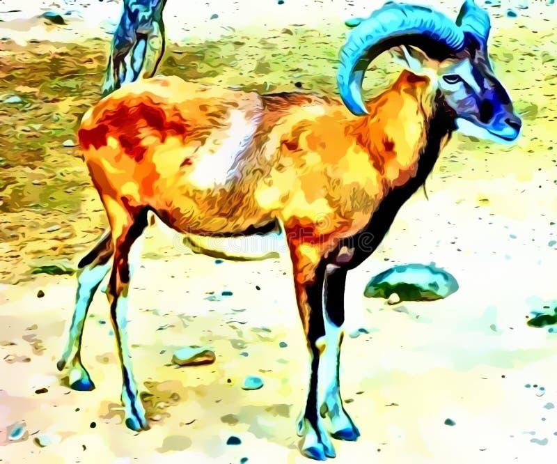 站立在一个cartoonic看法的野绵羊 免版税图库摄影