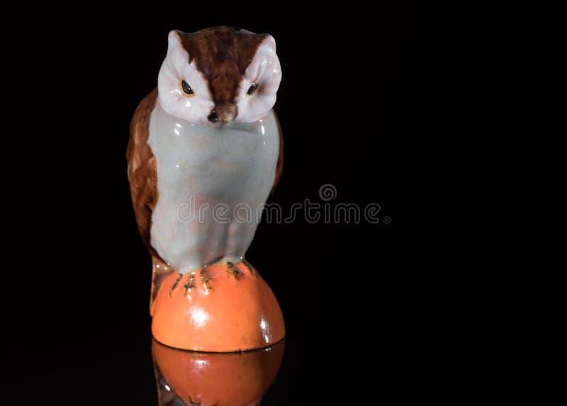 站立在一反射性surfac的一头小瓷猫头鹰的特写镜头 库存图片