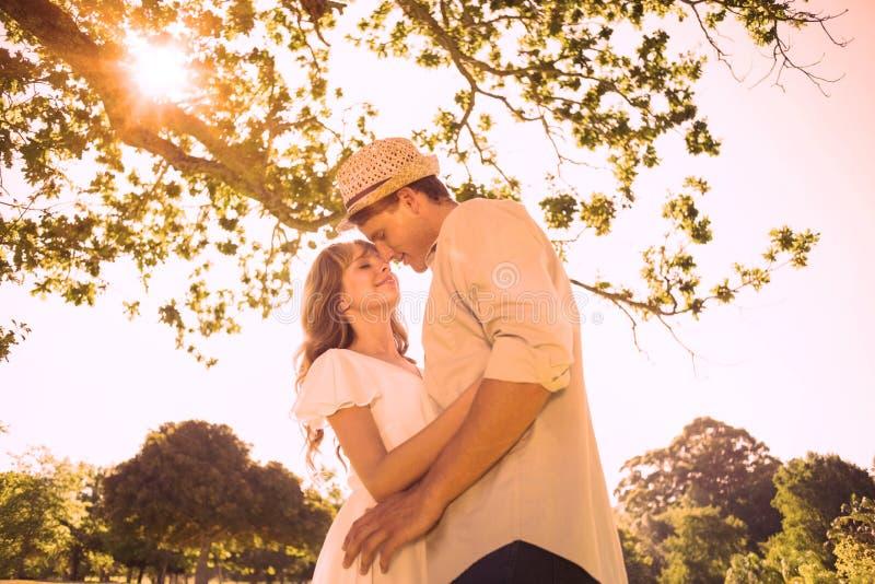 站立在公园拥抱的逗人喜爱的夫妇 皇族释放例证