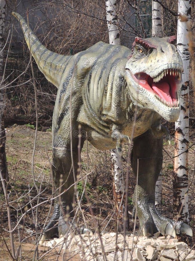 Download 站立在公园的恐龙 库存图片. 图片 包括有 brander, 结构树, 爬行动物, 开放, 突出, 恐龙 - 72361113