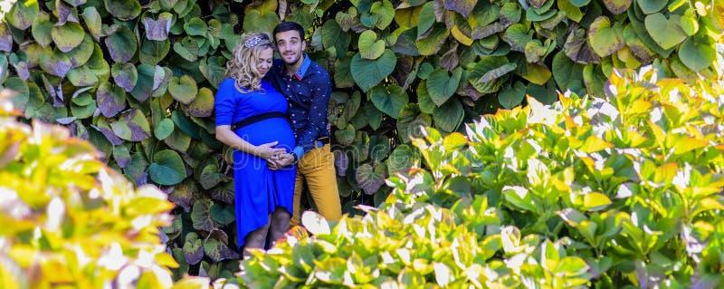 站立在公园的年轻人怀孕的夫妇 库存图片
