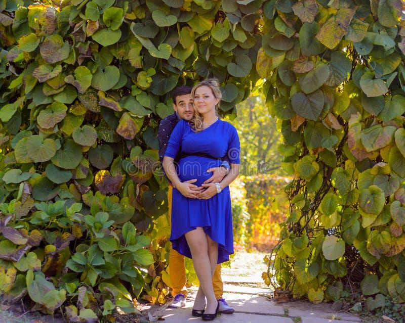 站立在公园的年轻人怀孕的夫妇 图库摄影