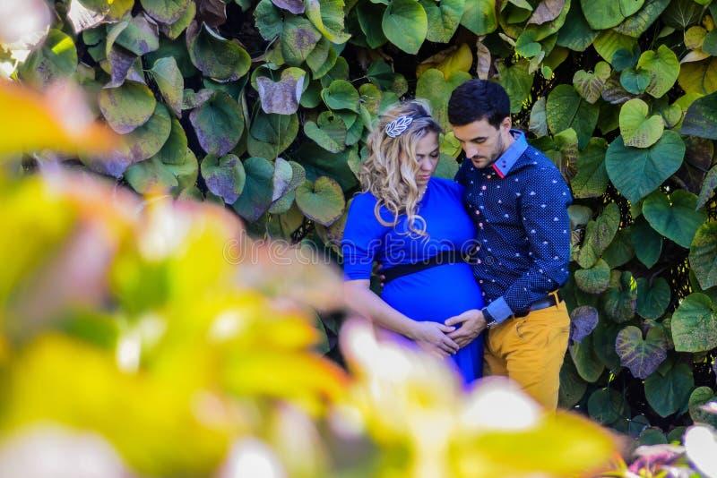 站立在公园的年轻人怀孕的夫妇 库存照片