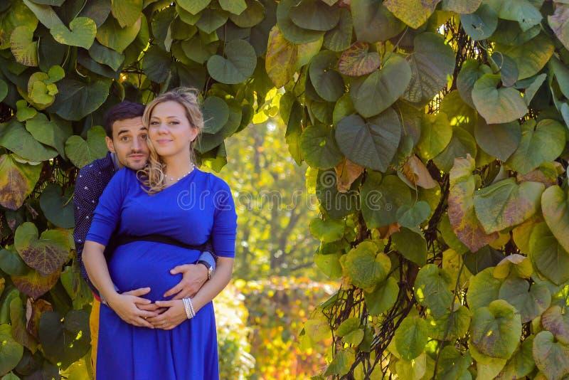 站立在公园的年轻人怀孕的夫妇 免版税库存照片
