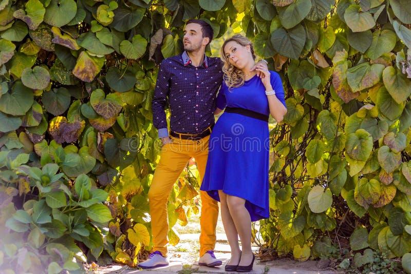 站立在公园的年轻人怀孕的夫妇 免版税库存图片