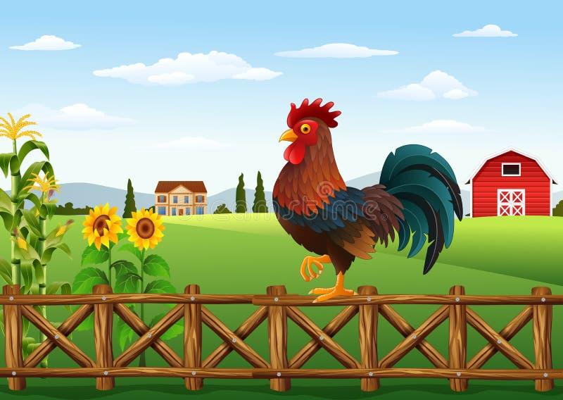 站立在农厂篱芭的逗人喜爱的动画片雄鸡 向量例证