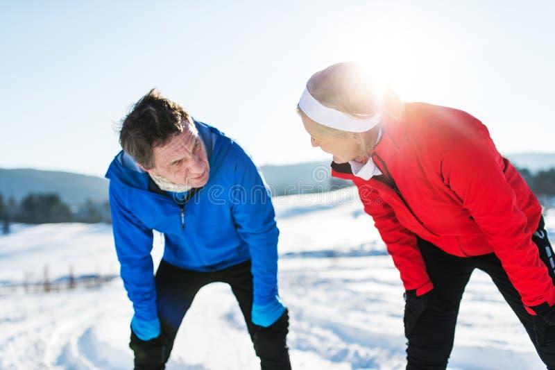 站立在冬天自然的资深夫妇赛跑者,休息 库存图片