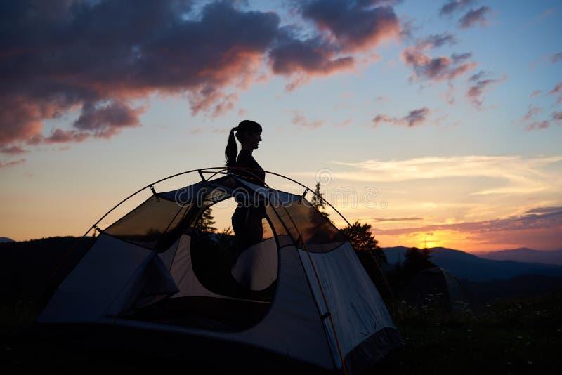 站立在外形的一个可爱的女孩的剪影在帐篷附近在晚上天空下在破晓 库存图片