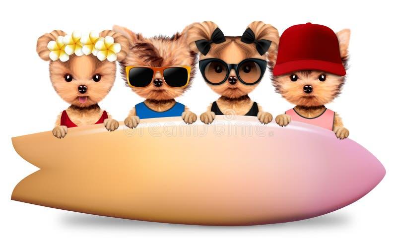 Download 站立在大冲浪板后的动物 库存例证. 插画 包括有 沙子, 加勒比, 海岸, sunbath, 海运, 手段 - 96836692