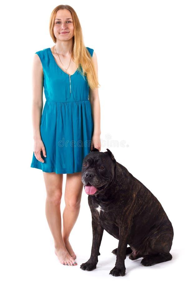 站立在大狗藤茎Corso旁边的蓝色礼服的女孩 图库摄影