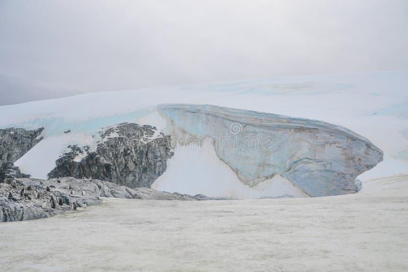 站立在岩石地形的企鹅在巨大的波形的冰川旁边 免版税库存图片