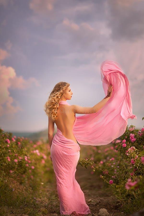 站立在庭院玫瑰的一件桃红色礼服的美丽的性感的女孩 库存图片
