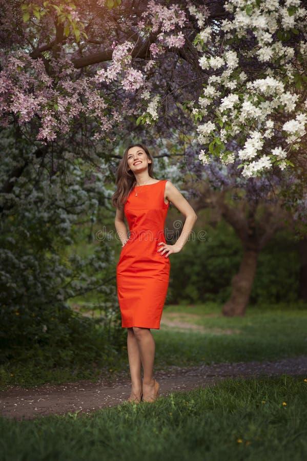 站立在开花的树附近的俏丽的妇女画象 库存照片