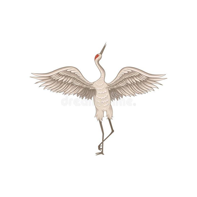 站立在有大开翼的一条腿的优美的红被加冠的起重机 与长的额嘴的涉水鸟 平的传染媒介象 库存例证