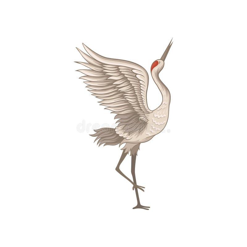 站立在有大开翼的一条腿的典雅的红被加冠的起重机 与长的额嘴的野生鸟 平的传染媒介象 皇族释放例证