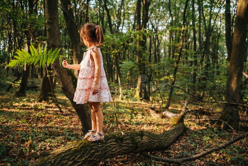 站立在有蕨的森林里的小女孩 库存照片