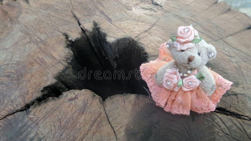 站立在木山沟的小熊玩偶 库存图片