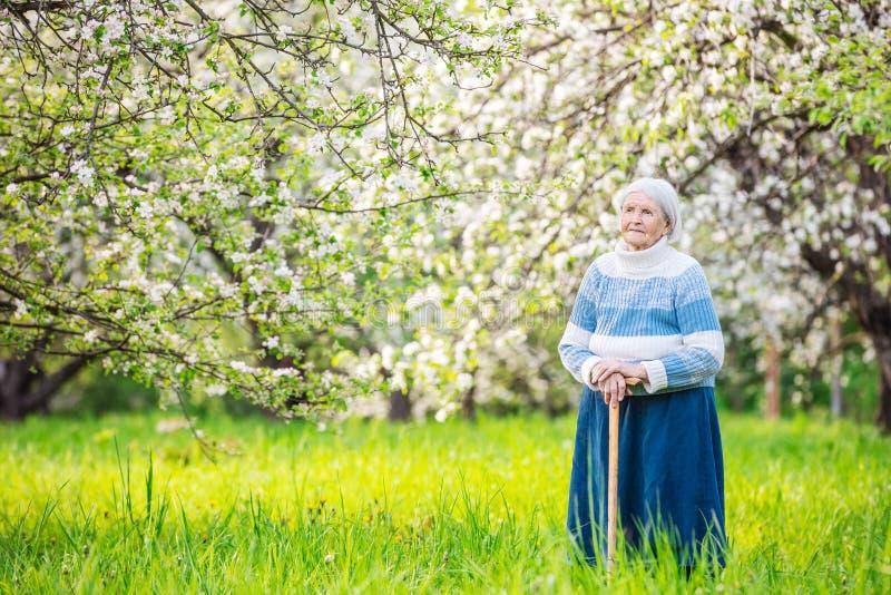 站立在果树园的资深妇女 免版税库存照片