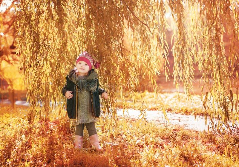 站立在树下的小女孩 库存图片