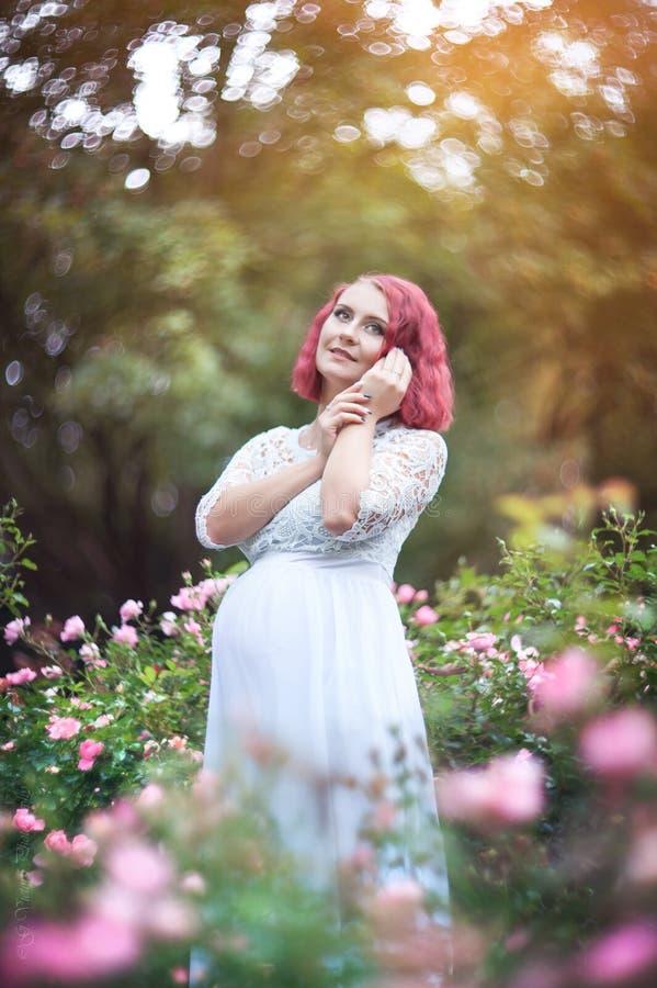 站立在桃红色玫瑰w庭院里的年轻美好的妇女ist  图库摄影
