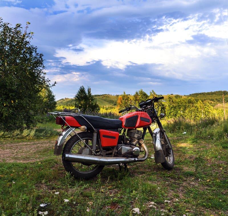 站立在森林公路的摩托车手提箱 库存照片