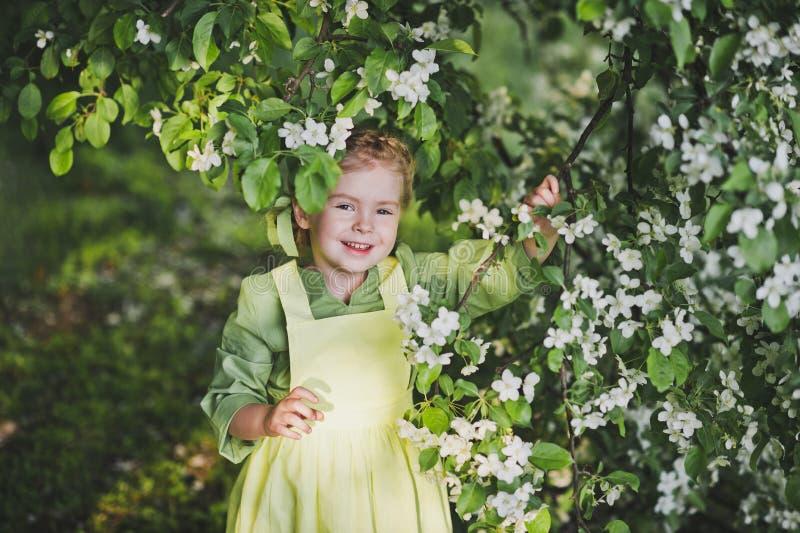 站立在樱桃blo的分支的附近孩子的画象 免版税库存图片