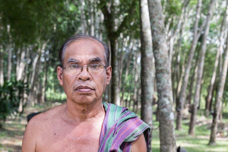 站立在橡胶树庭院里的泰国年迈的人 库存图片